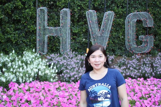 Nova at HVG